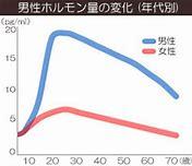 男性ホルモンの量の変化のグラフ