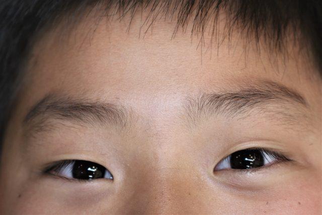 子供のまゆ毛の画像