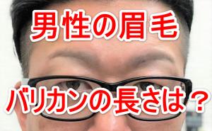 男性のまゆ毛の画像